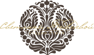 logo_SM_Темный